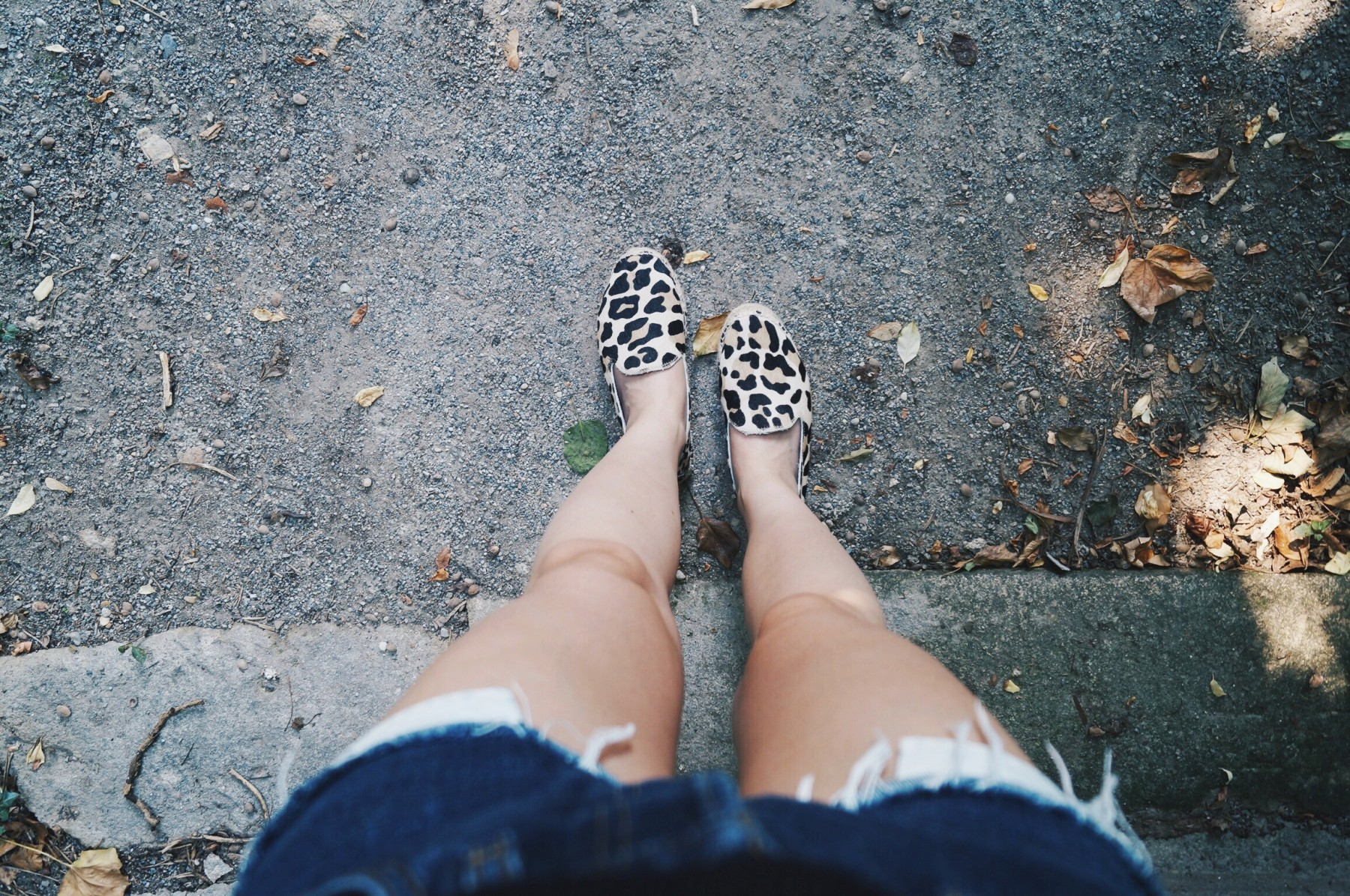 leopardespadrilles7
