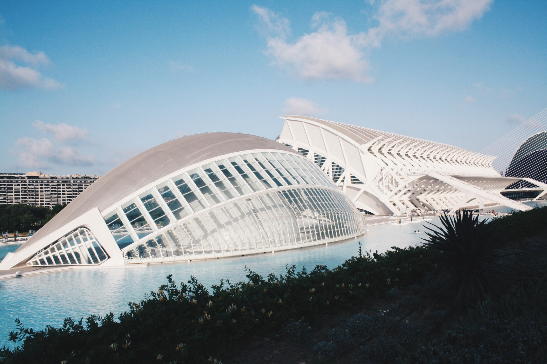 10thingstodoinvalencia3
